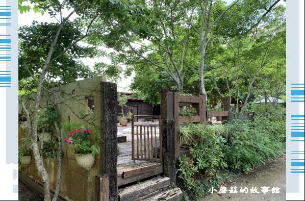 109.5.7.(11)苗栗-湖畔花時間.JPG