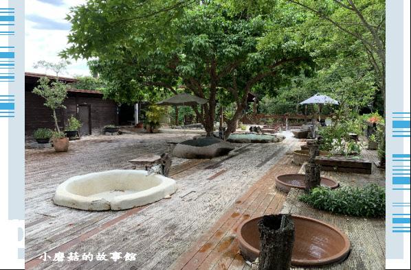 109.5.7.(13)苗栗-湖畔花時間.JPG