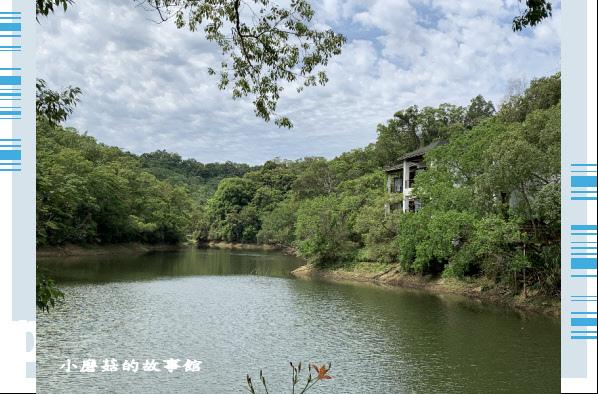 109.5.7.(15)苗栗-湖畔花時間.JPG