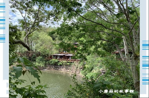 109.5.7.(17)苗栗-湖畔花時間.JPG