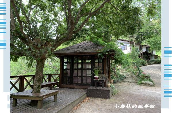 109.5.7.(18)苗栗-湖畔花時間.JPG