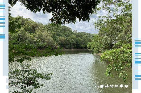 109.5.7.(19)苗栗-湖畔花時間.JPG