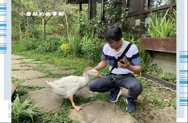 109.5.7.(54)苗栗-湖畔花時間.JPG
