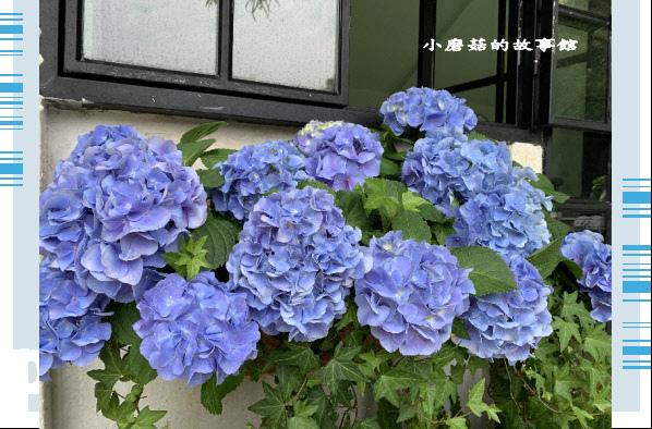 109.5.7.(138)苗栗-花露休閒農場.JPG