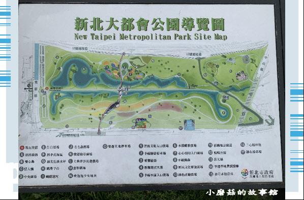 109.5.1.(1)新北大都會公園.JPG