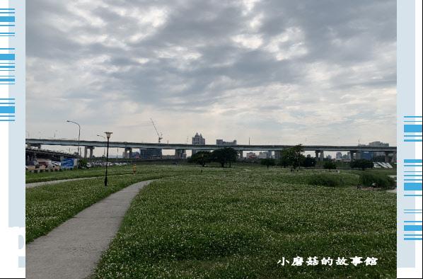 109.5.1.(2)新北大都會公園.JPG