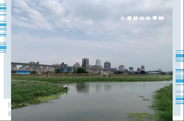 109.5.1.(15)新北大都會公園.JPG