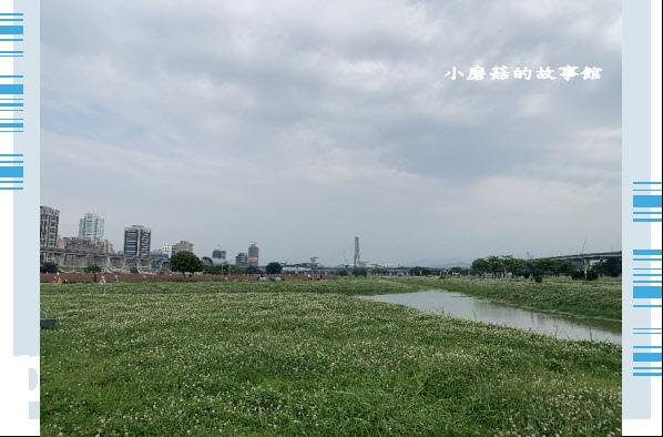 109.5.1.(16)新北大都會公園.JPG