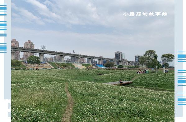 109.5.1.(18)新北大都會公園.JPG