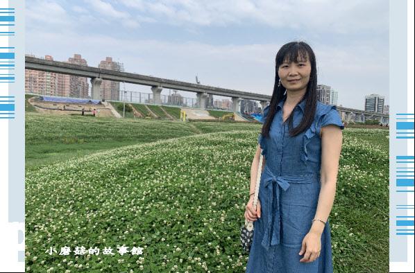 109.5.1.(20)新北大都會公園.JPG