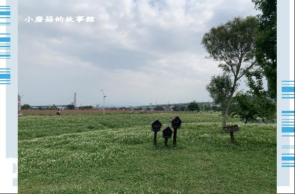 109.5.1.(21)新北大都會公園.JPG