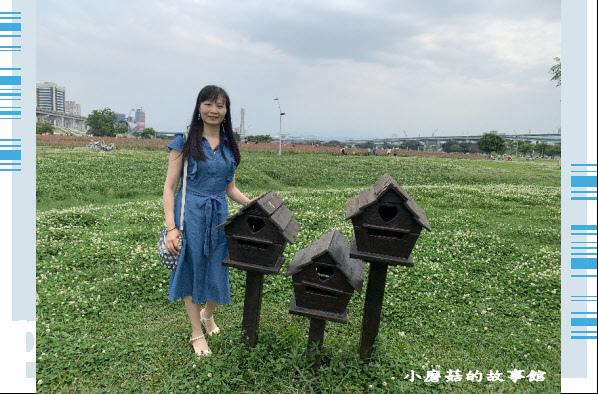 109.5.1.(23)新北大都會公園.JPG