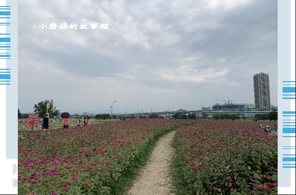 109.5.1.(28)新北大都會公園.JPG
