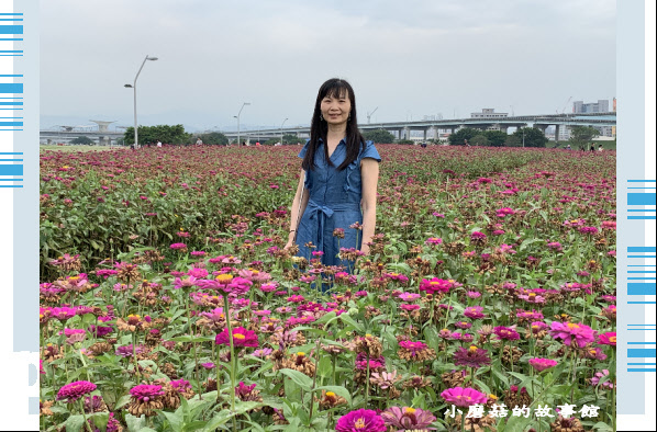 109.5.1.(34)新北大都會公園.JPG