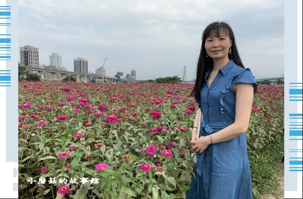 109.5.1.(39)新北大都會公園.JPG