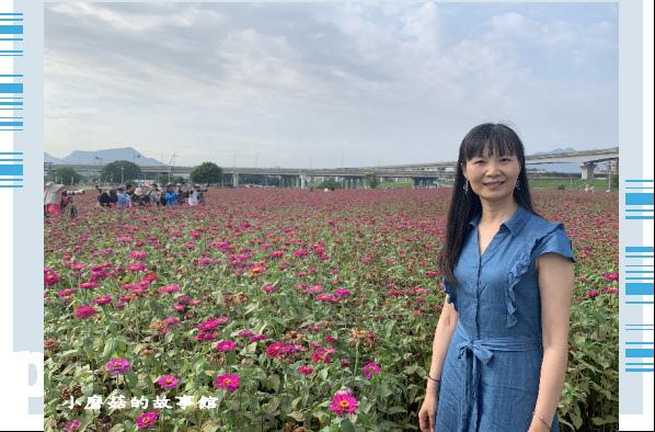 109.5.1.(48)新北大都會公園.JPG