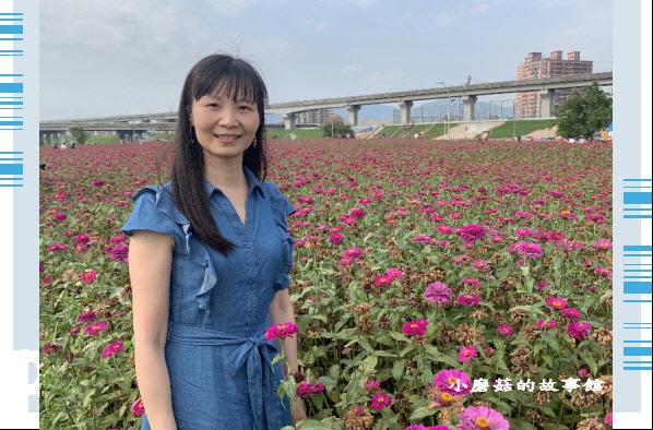 109.5.1.(51)新北大都會公園.JPG
