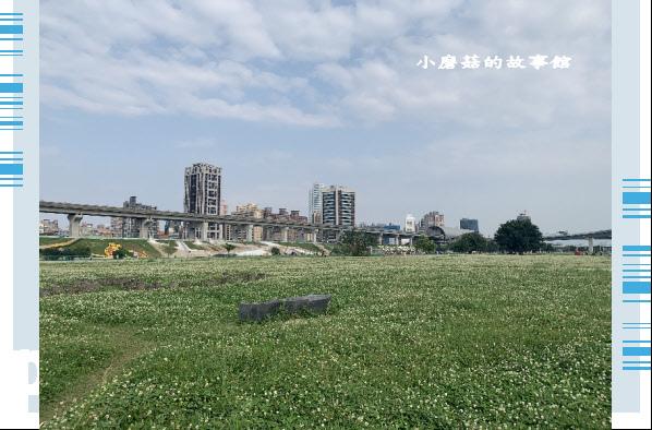 109.5.1.(55)新北大都會公園.JPG