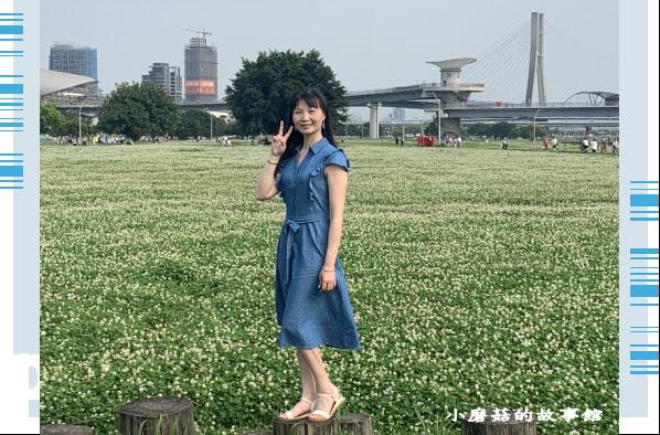 109.5.1.(62)新北大都會公園.JPG