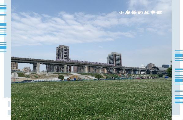 109.5.1.(77)新北大都會公園.JPG