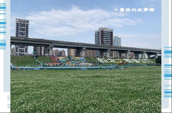 109.5.1.(78)新北大都會公園.JPG