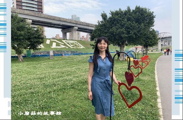 109.5.1.(80)新北大都會公園.JPG
