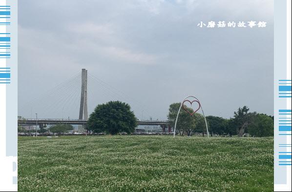 109.5.1.(83)新北大都會公園.JPG