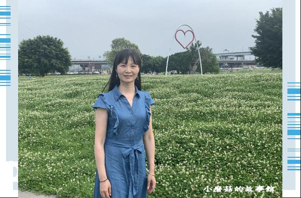 109.5.1.(85)新北大都會公園.JPG