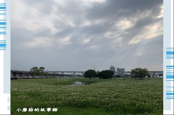 109.5.1.(86)新北大都會公園.JPG