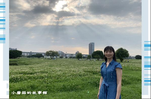 109.5.1.(93)新北大都會公園.JPG