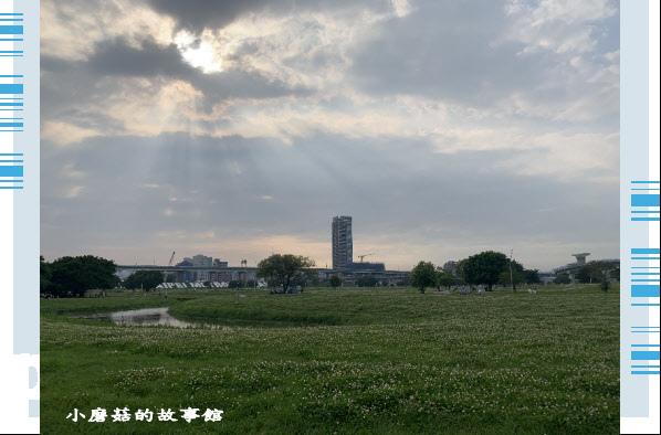 109.5.1.(94)新北大都會公園.JPG
