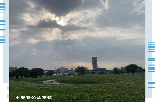 109.5.1.(95)新北大都會公園.JPG