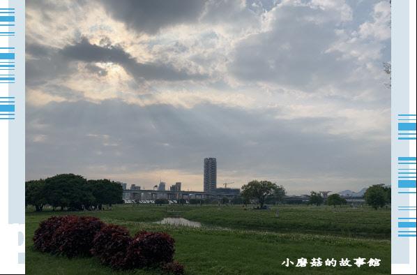 109.5.1.(96)新北大都會公園.JPG