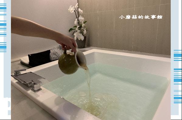 109.5.9.(108)嘉義-承億文旅‧桃城茶樣子.JPG