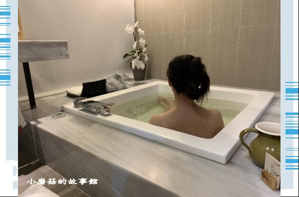 109.5.9.(109)嘉義-承億文旅‧桃城茶樣子.JPG