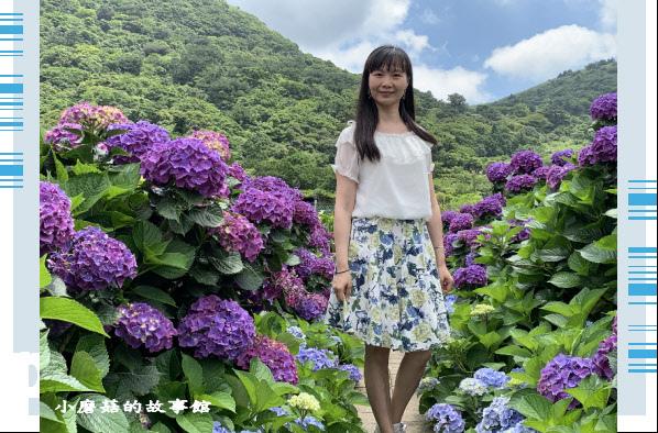 109.6.3.(65)財福繡球花田.JPG