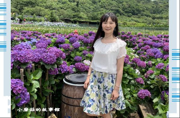 109.6.3.(204)財福繡球花田.JPG