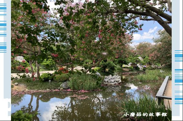 109.6.17.(12)台灣銘園庭園美術館‧紫薇花.JPG