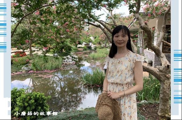 109.6.17.(14)台灣銘園庭園美術館‧紫薇花.JPG