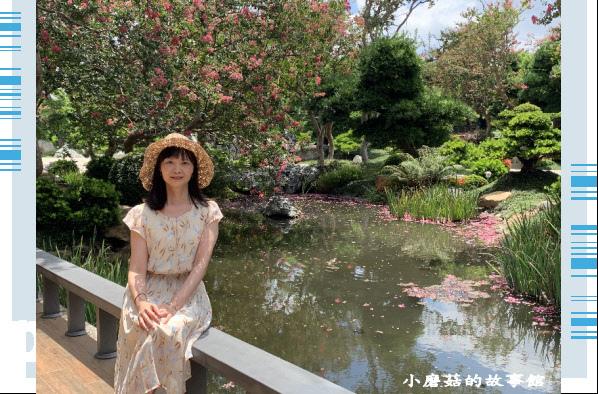 109.6.17.(42)台灣銘園庭園美術館‧紫薇花.JPG