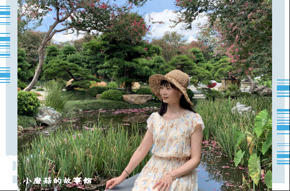 109.6.17.(50)台灣銘園庭園美術館‧紫薇花.JPG