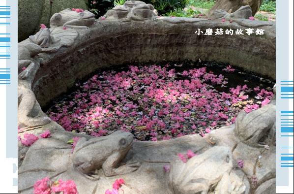 109.6.17.(83)台灣銘園庭園美術館‧紫薇花.JPG