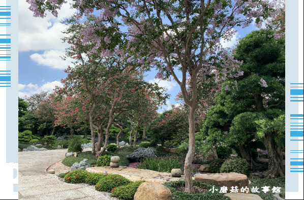 109.6.17.(85)台灣銘園庭園美術館‧紫薇花.JPG