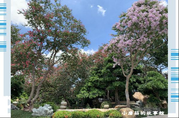 109.6.17.(89)台灣銘園庭園美術館‧紫薇花.JPG