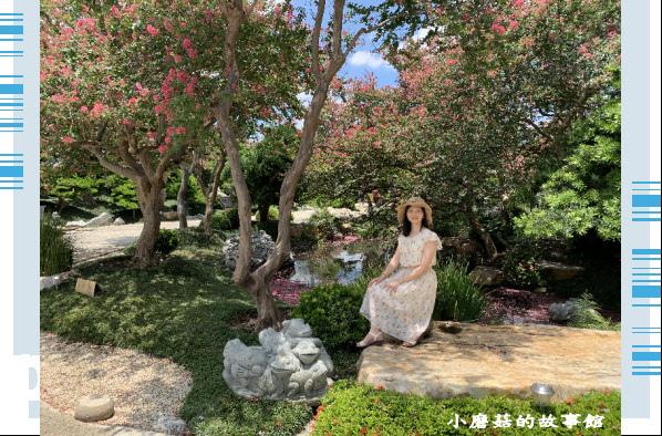 109.6.17.(101)台灣銘園庭園美術館‧紫薇花.JPG