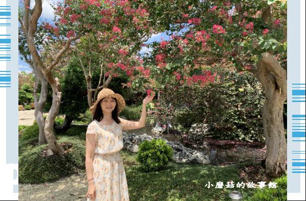 109.6.17.(118)台灣銘園庭園美術館‧紫薇花.JPG