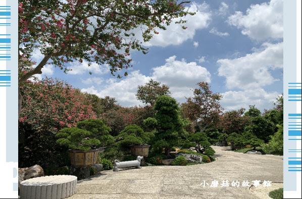 109.6.17.(139)台灣銘園庭園美術館‧紫薇花.JPG