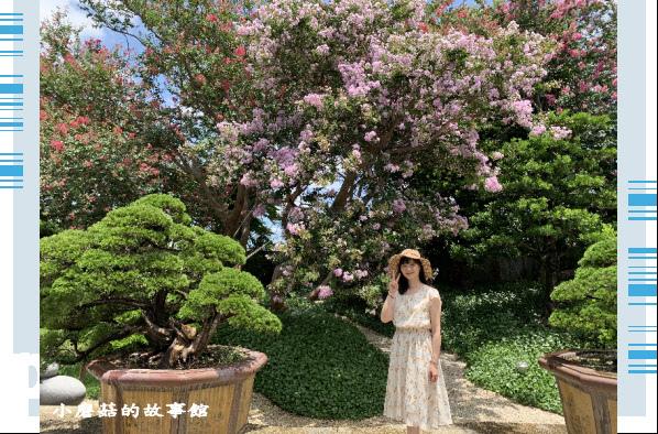 109.6.17.(160)台灣銘園庭園美術館‧紫薇花.JPG