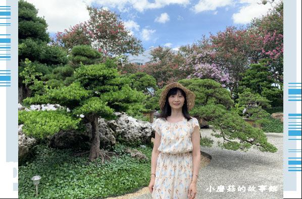 109.6.17.(170)台灣銘園庭園美術館‧紫薇花.JPG