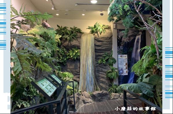 109.4.4.(15)嘉義-圓潭生態園區.JPG